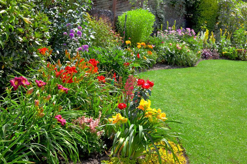 Gartenbau K�ln S�rth