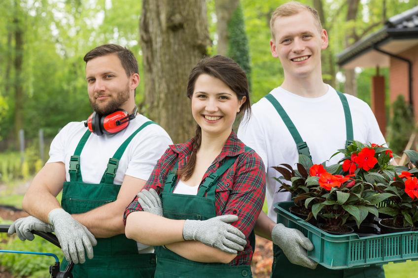 Gartenpflege Köln
